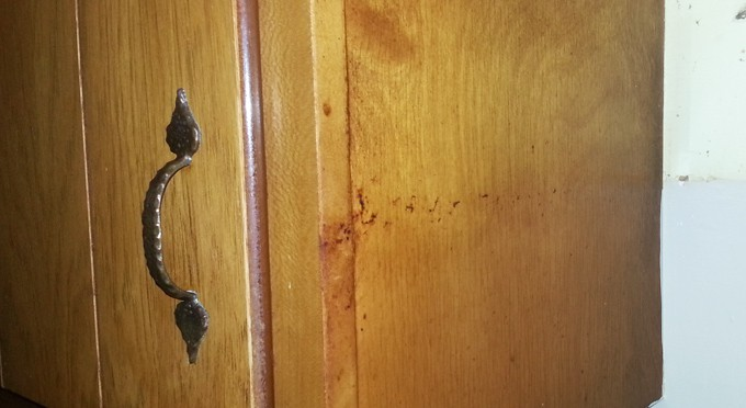 Remove Greasy Buildup From Wood Cabinets Simply Good Tips